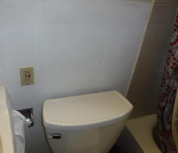 Mold Remediation How Often Should You Clean Your Bathroom To Avoid Growth