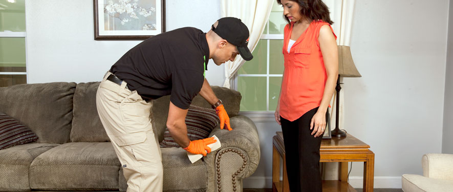 Fall River, MA carpet upholstery cleaning
